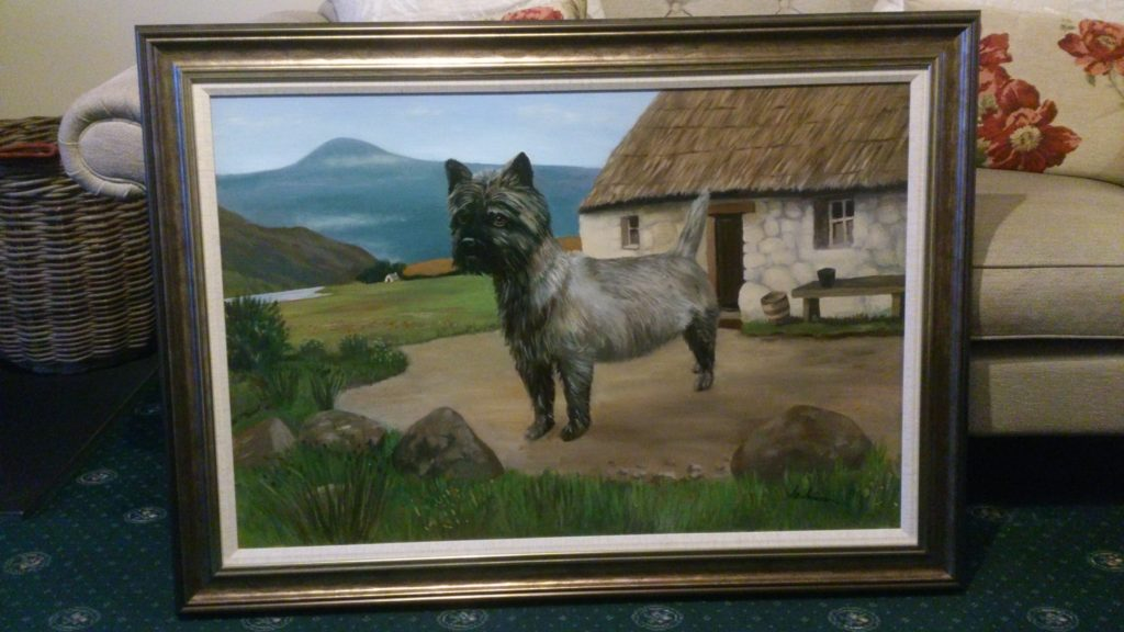 Billy the Cairn Terrier
