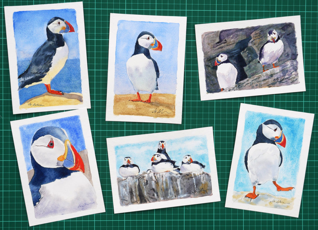 photo of six watercolour paintings of puffins
